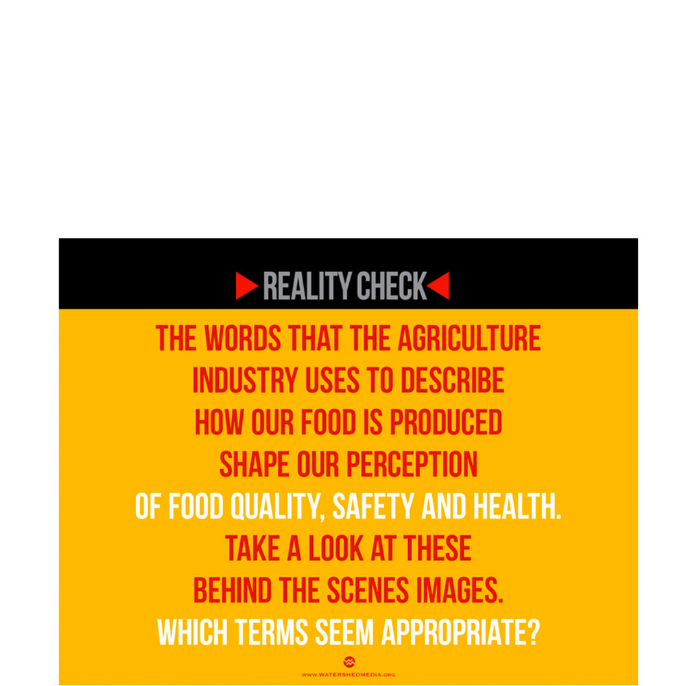 "Watershed Media Launches ""Reality Check"" Communication Tool"